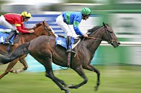 How to Bet on Horse Racing – A Beginners Guide