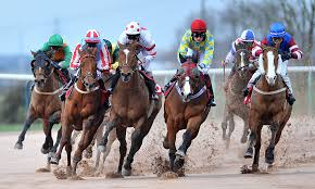 How To Bet On Horse Racing