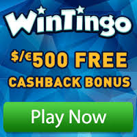 Wintingo Review