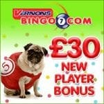 Vernons Bingo Review