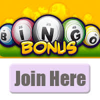 Bingo Bonus Review