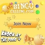 Bingo Calling Review