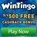 Wintingo Review