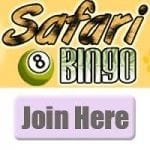 Safari Bingo Review