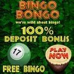 Bingo Bongo Review
